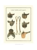 Ladies Saddles Plakat af  Vision Studio