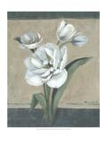 White Tulips II Premium Giclee Print by Marietta Cohen