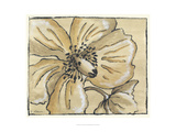 Tone on Tone Petals I Giclee Print by Slocum Nancy