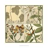 Botanical Quadrant III Print