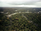 Aerial Photo of Guyana Jungle Photo