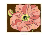 Petal Poetry II Giclee Print by Slocum Nancy