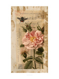 Bloom and Bee II Poster by Jennifer Goldberger