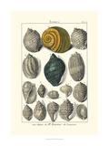 Seaside Treasures III Lámina por Dezallier