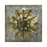 Rosette and Damask I Giclee Print by Jennifer Goldberger
