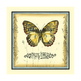 Butterfly and Wildflowers II Print by Jennifer Goldberger