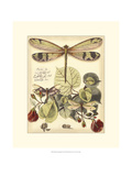 Whimsical Dragonflies II Giclee-tryk i høj kvalitet af  Vision Studio