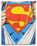 Superman Tyvek Mighty Case Tablet Laptop Case