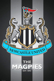 Newcastle United FC - The Magpies Club Crest Julisteet