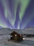 Northern Lights, White Mountain National Recreation Area, Alaska, USA Fotografisk trykk av Hugh Rose
