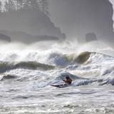 La Push Pummel and Sea Stacks, Washington, USA Photographic Print by Gary Luhm