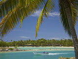 Palm Trees and Lagoon, Musket Cove Island Resort, Malolo Lailai Island, Mamanuca Islands, Fiji Photographic Print by David Wall