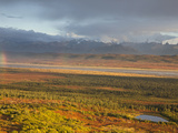 Tundra, Denali National Park, Alaska, USA Photographic Print by Hugh Rose