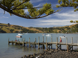 Jetty, Akaroa, Banks Peninsula, Canterbury, South Island, New Zealand Photographic Print by David Wall