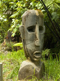 Art at Lochmara Lodge, South Island, New Zealand Photographic Print by Lee Foster