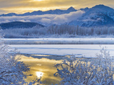 Snowy Scenery, Chilkat Bald Eagle Preserve, Alaska, USA Photographic Print by Cathy & Gordon Illg