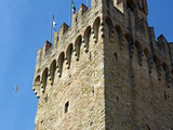 Piazza Della Libert‡, Town Hall Tower, Arezzo, Tuscany, Italy Photographic Print by Nico Tondini