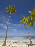 Hammock and Palm Trees, Plantation Island Resort, Malolo Lailai Island, Mamanuca Islands, Fiji Photographic Print by David Wall