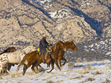 Cowboy Riding Horse, Shell, Wyoming, USA Photographic Print by Terry Eggers