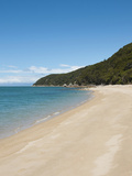 Landscape, Abel Tasman National Park, South Island, New Zealand Photographic Print by Lee Foster