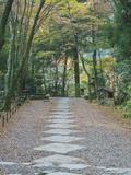 Kozanji Temple, Kyoto, Japan Photographic Print by Rob Tilley
