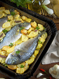 Gilthead Breams with Potatoes, Onions and Anchovies, Israeli Cooking, Israel Photographic Print by Nico Tondini