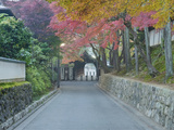 Tokufuji Temple, Kyoto, Japan Photographic Print by Rob Tilley