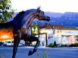 Statue of Bronze Stallion on Main Street in Small Town of Joseph, Wallowa County, Oregon, USA Photographic Print by Nik Wheeler