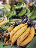 Fresh Bananas at the Local Market in St John's, Antigua, Caribbean Photographic Print by Kymri Wilt