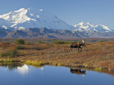 Mt. Mckinley, Denali National Park, Alaska, USA Photographie par Hugh Rose