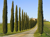 Val D'Orcia, Siena Province, Siena, Tuscany, Italy Photographic Print by Nico Tondini
