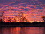 Brilliant Sunset Reflects into the Calamus River in Loup County, Nebraska, USA Stampa fotografica di Chuck Haney