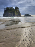 Beach, Olympic National Park, Washington, USA Photographic Print by Tom Norring