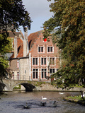 Swans on Minnewater Lake, Bruges, Belgium Photographic Print by Kymri Wilt