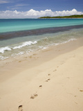 Footprints in Sand on Natadola Beach, Coral Coast, Viti Levu, Fiji, South Pacific Photographic Print by David Wall