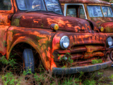 Rusty Trucks at Old Car City, Georgia, USA Photographic Print by Joanne Wells