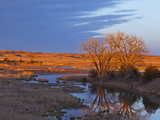 Bathed in Sunset Light the Calamus River in Loup County, Nebraska, USA Stampa fotografica di Chuck Haney