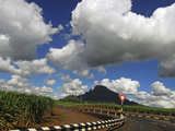 Car on Winding Road, Mauritius Photographic Print by Anthony Asael