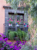 Window with Geraniums, San Miguel De Allende, Mexico Photographic Print by Alice Garland