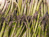 Asparagus, Marlborough, South Island, New Zealand Photographic Print by Lee Foster