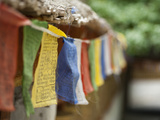 Prayer Flags, Alchi, Ladakh, India Photographic Print by Anthony Asael