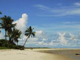 White Sand Beach, Ilha De Itamaraca, Pernambuco, Brazil Photographic Print by Anthony Asael