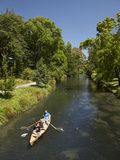 Rowing on the Avon, Christchurch, Canterbury, South Island, New Zealand Photographic Print by David Wall