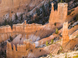 Wall of Hoodoos at Bryce Canyon National Park, Utah, USA Photographic Print by Tom Norring