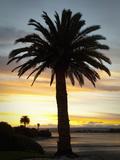 Sunset, Nelson, South Island, New Zealand Photographic Print by Douglas Peebles