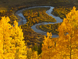 Gunnison National Forest, Colorado, USA Photographic Print by Cathy & Gordon Illg