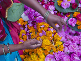 Woman Selling Flower, Pushkar, Rajasthan, India Photographic Print by Keren Su