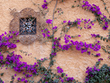 Ornamental Window, San Miguel De Allende, Mexico Photographic Print by Alice Garland