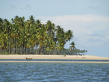 White Sand Beach, Praia Dos Carneiros, Pernambuco, Brazil Photographic Print by Anthony Asael
