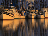 Shrimp Boats, Georgia, USA Photographic Print by Joanne Wells